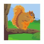 Squirrel on a branch eating, decals stickers