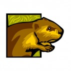 Brown beaver close up, decals stickers