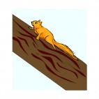 Squirrel walking on a branch, decals stickers