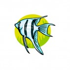 Blue with black stripped angelfish, decals stickers