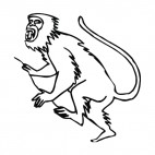Baboon screaming, decals stickers