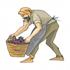 Farmer with grape basket, decals stickers