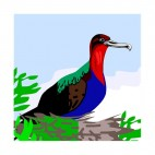 Muticolored bird sitting on nest, decals stickers